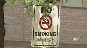 Smoking Ban At Chicago Parks Not Stopping Many Smokers From Lighting Up [Video]