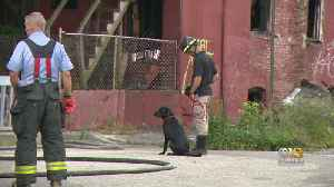 Body Found In Vacant House Fire On East Biddle Street [Video]