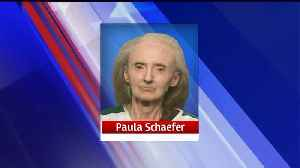 36 Cats Rescued from Filthy Iowa Home; 70-Year-Old Woman Arrested [Video]