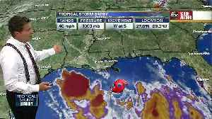 News video: Tropical Storm Barry forms in Gulf of Mexico, expected to strengthen into hurricane on Friday