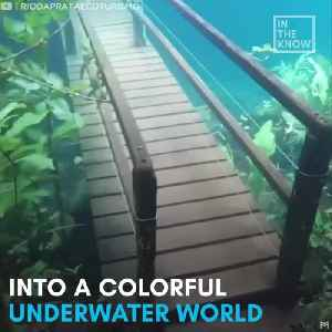 This hiking trail is an underwater paradise [Video]