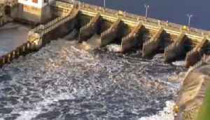 U.S Army Corps of Engineers admits to releasing toxic water [Video]