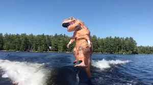 Dino-surfs! Man in t-rex costume surfs on a hydrofoil board [Video]
