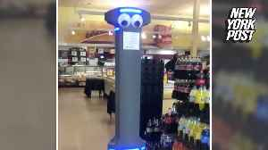 Is Marty the grocery store robot cool or creepy? [Video]
