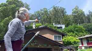 Fire Fears Focus on Oakland Hills After Decades of Vegetation Growth [Video]