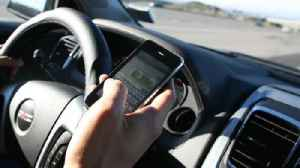 West Palm Beach mayor, police chief address Florida's texting and driving law [Video]