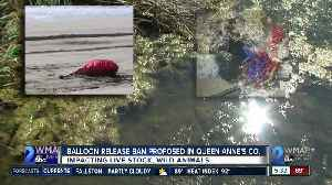 Balloon release ban proposed in [Video]