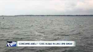Concerned about toxic algae found in Lake Erie? Don't be. [Video]