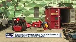 Vandals destroy farm plots at Detroit nonprofit 'Recovery Park' [Video]