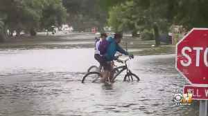 News video: Weather: Louisiana Coast No Longer Under Hurricane Warning, Barry Likely To Weaken To Depression