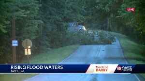 Barry topples trees in Natchez [Video]