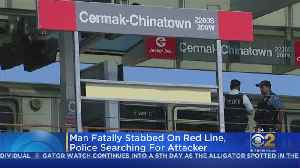 Commuters Respond After Stabbing On CTA Red Line [Video]