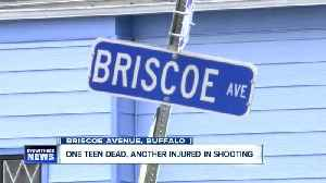 Two teenagers shot, one dead following Briscoe Avenue shooting [Video]