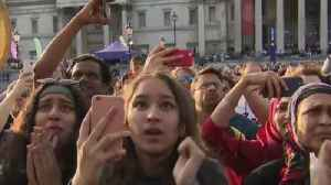 Cricket fans react to England victory [Video]