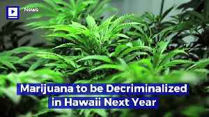 Marijuana to Be Decriminalized in Hawaii Next Year [Video]