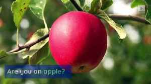 Pear-Shaped Women Are Healthier Than Apple-Shaped Women [Video]