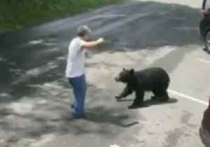 Mother Bear Charges at Man After He Gets Too Close to Cubs in Tennessee [Video]
