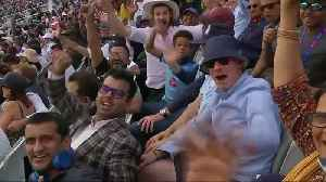 Fans react to incredible Cricket World Cup final [Video]