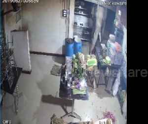 'Curious' elephant raids restaurant in southern India [Video]