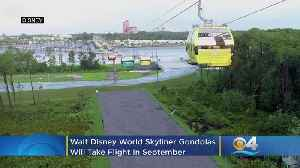 Disney Skyliner Gondolas Will Take Flight In September [Video]