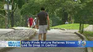 30 Minutes Spent In Nature Can Significantly Improve Mental Health, Study Finds [Video]