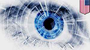 Brain implant restores partial vision to the blind [Video]