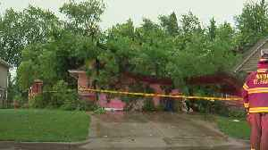 Severe Weather Damages Trees, Homes, Power Lines [Video]