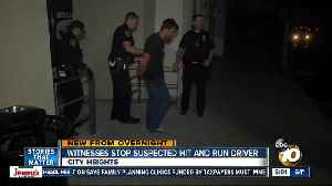 Hit-and-run driver stopped by witnesses [Video]