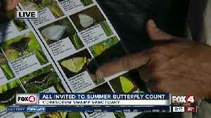 Butterfly count at Corkscrew Swamp Sanctuary 8:00 a.m. [Video]