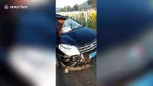Car impaled by donkey after driver blinded by headlights in China's Inner Mongolia [Video]