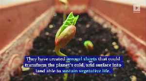Scientists Have Figured out How to Grow Food on Mars [Video]