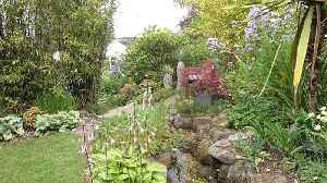 Quite The Secret Garden! Couple Spend Fortune Transforming Back Garden Into Round-the-world Paradise [Video]