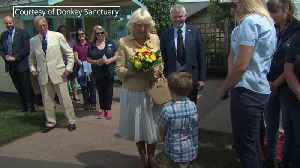 Three-year-old boys sings Happy Birthday to Camilla