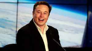 Elon Musk Gives First Glimpse of His Brain-Reading Venture [Video]