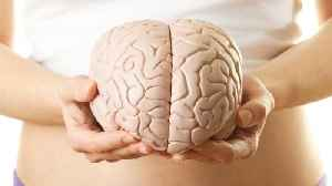 New Study Reveals A Trick People Can Use To Curb Age-Related Cognitive Decline [Video]