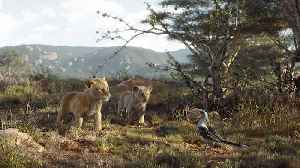 'The Lion King' Looks Set to Earn $150M-Plus in Domestic Debut | THR News [Video]