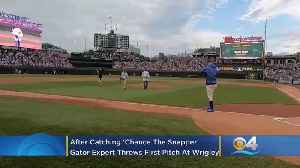 Florida Man, Gator Expert Who Captured 'Chance The Snapper,' Throws Out First Pitch At Chicago Cubs Game In Wrigley Field [Video]