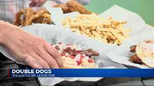 National Hot Dog Day with Double Dogs [Video]
