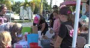 Fundraiser held to help breast cancer survivor [Video]