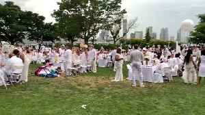 Picnickers Flee as Storms Pummel Large-Scale Event in Manhattan [Video]