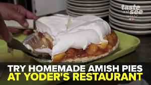 Try homemade Amish pies at Yoder's Restaurant & Amish Village | Taste and See Tampa Bay [Video]