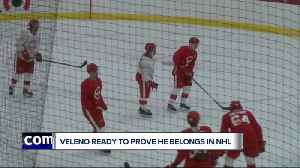 Joe Veleno sets sights high with Red Wings [Video]