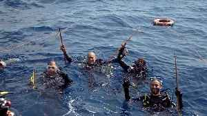 Watch: Food initiative tackles Cyprus' lionfish invasion [Video]