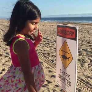 Little Girl Thinks Sign on Beach Means Sharks are Excited [Video]