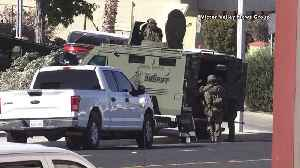 Suspect Expected to Survive After Deputies Open Fire on Him Following Hourslong California Standoff [Video]
