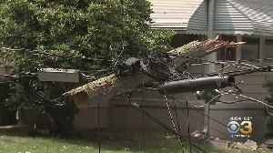 Trees, Power Lines Fall Victim To Severe Weather In Ewing Township [Video]