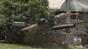 Storms Send Trees, Power Lines Crashing To Ground In Mercer County [Video]