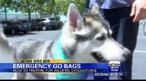 CAL FIRE encourages pet preparedness during wildfire season [Video]