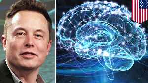 Elon Musk wants to merge humans and AI with brain implant [Video]