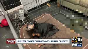 Mesa shelter owner facing 117 counts of animal cruelty [Video]